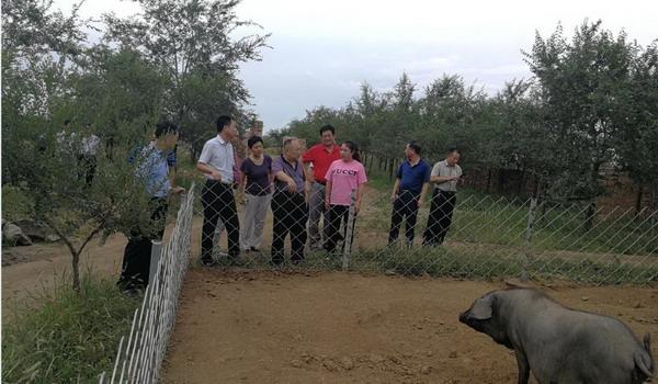 延庆区种植业服务中心帮扶兴和县五股泉乡穆家湾村进行对接