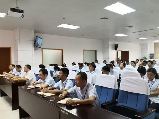 北海市行政审批局机关党委组织学习《中国共产党纪律处分条例》